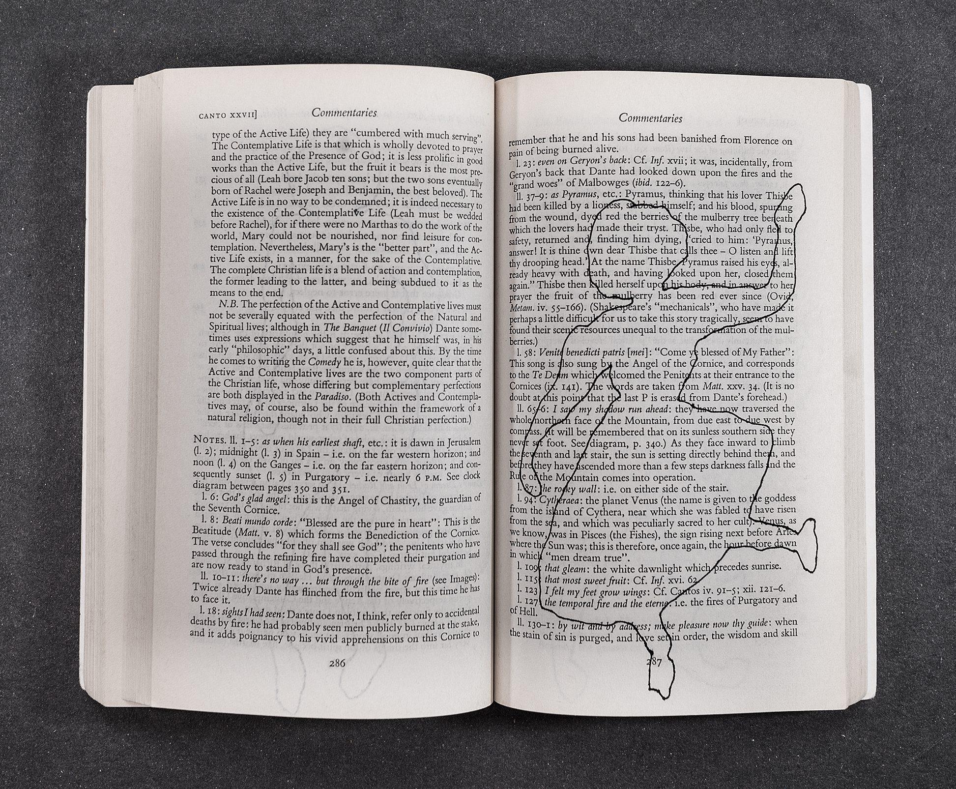 Dante Alighieri: Die Göttliche Komödie - Purgatorium mit Skizzen von Lindy Annis, 2016